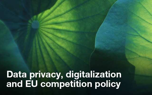 Data privacy, digitalization and EU competition policy